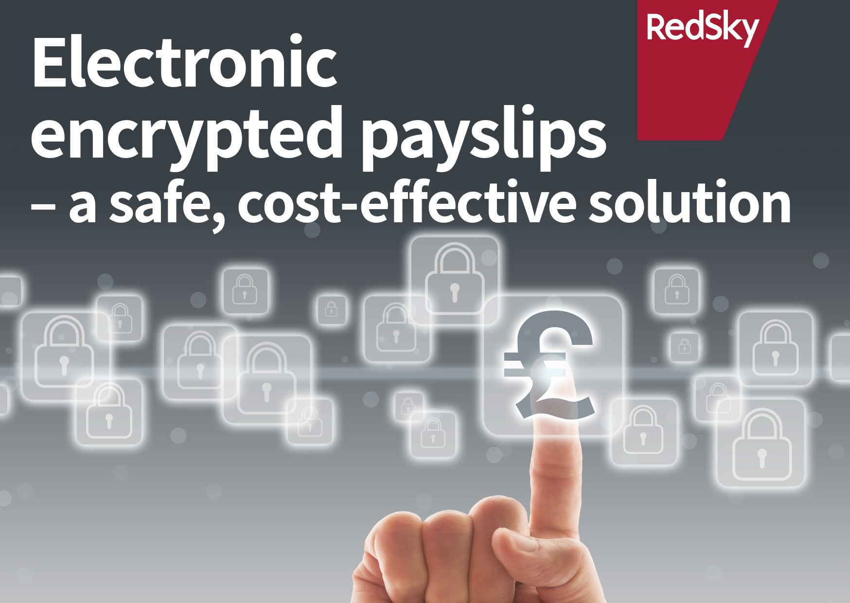 redsky electronic encrypted payslips for hr